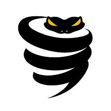 VPN: Best Private & Secure VyprVPN